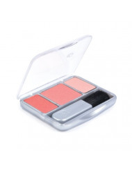CoverGirl Instant Cheekbones Contouring Blush Peach Perfection 210, 0.29 Ounce Pan