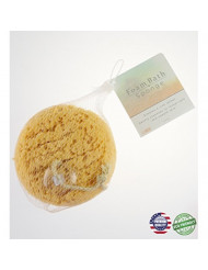 Paradiso Foam Sea Sponge with Suction Cup