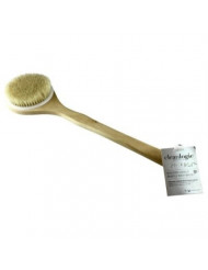 Clean Logic Wooden Handle Bristle Bath Brush (3 Pack)