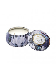Voluspa Maison Jardin Two-wick Candle, Apple and Blue Clover, 11 Ounce