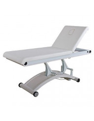 ADAP Professional Massage and Facial Treatment Electric Bed Table - USA-2241