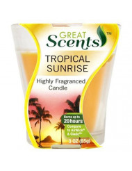 personal care Products 92911-1 3OZ Tropical Sun Candle