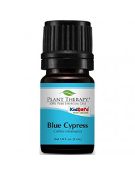 Plant Therapy Blue Cypress Essential Oil 5 mL (1/6 oz) 100% Pure, Undiluted, Therapeutic Grade