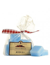 Pack of 2 Ocean Breeze Scented Wax Melts Bag of 10 for Weddings, Home & Event Decoration, Relaxation, Made in US