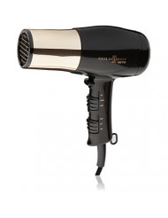 Gold 'N Hot GH8135 Professional 1875-Watt Dryer with Styling Pik