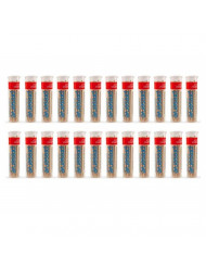 Preserve Toothpicks, Cinnamint, 24 canisters