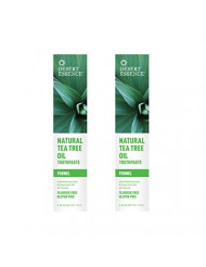 Desert Essence Natural Tea Tree Oil Fennel Toothpaste, 6.25 Ounce - 2 per case.