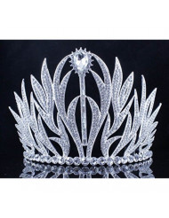 Janefashions Sexy Floral Clear Austrian Crystal Rhinestone Large Tiara With Hair Combs Crown Pageant Beauty Queen Princess Birthday Party Hair Jewelry Prom Silver T11979