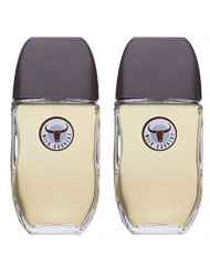 Avon Wild Country for men Cologne Spray 3 Fl Oz Lot of 2 sold by Z&S Cosmetics