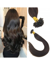 Sunny 16inch U Tip Remy Hair Extensions Human Hair,Pre Bonded Remy Keratin Fusion Hair Extensions,#2 Darkest Brown U Tip Hair Extensions Total 50g 1G/S