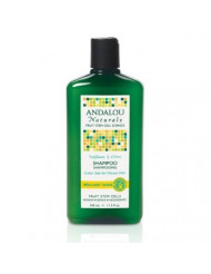 Andalou Naturals Brilliant Shine Shampoo, Sunflower and Citrus, 11.5 Ounce by Andalou Naturals