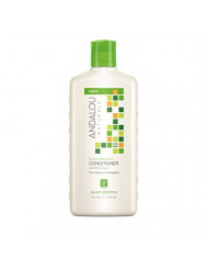 Andalou Naturals Marula Oil Silky Smooth Conditioner, 11.5 Oz