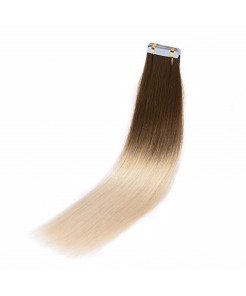 Rinboool Ombre Tape in Hair Extensions Straight,Thick End,16 Inch 40g,Real Remy Human Hair,2g/20pcs/pack,Chestnut Brown Fading to Platinum Blonde (16'' 40g, 6/60)