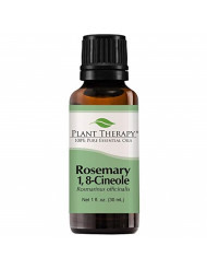 Plant Therapy Rosemary Essential Oil 100% Pure, Undiluted, Natural Aromatherapy, Therapeutic Grade 30 mL (1 oz)