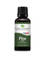 Plant Therapy Pine Scots Essential Oil 30 mL (1 oz) 100% Pure, Undiluted, Therapeutic Grade