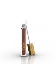 COVERGIRL Queen Colorlicious Gloss Copper Bliss Q690, .17 oz (packaging may vary)