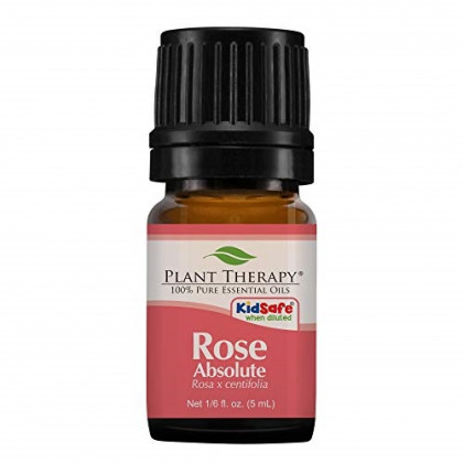 Plant Therapy Rose Absolute Essential Oil 100% Pure, Undiluted, Natural Aromatherapy, Therapeutic Grade 5 mL (1/6 oz)
