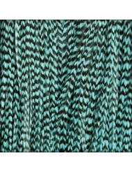 Long Striped Turquoise Feather Extensions