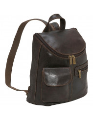 Woman's Backpack/Purse - DS-9109-Choc