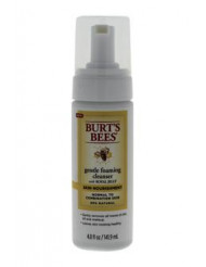 Skin Nourishment Gentle Foaming Cleanser by Burt's Bees for Unisex - 4.8 oz Cleanser